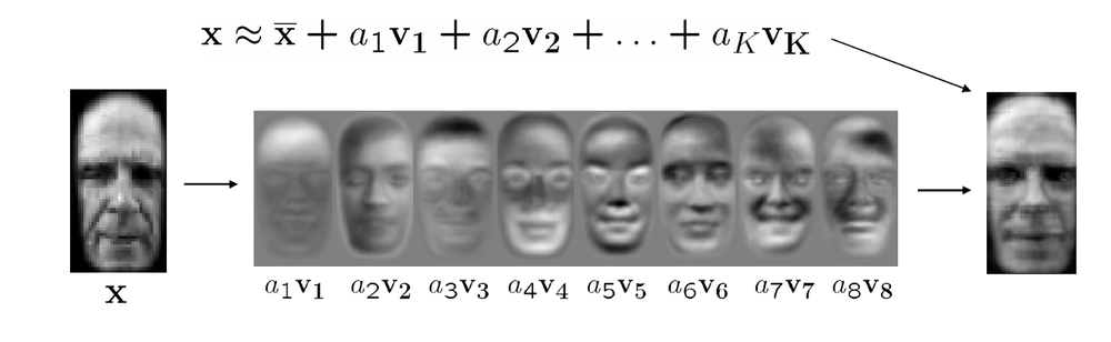 A visual representation of what happens after running many faces through the PCA algorithm.